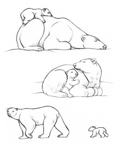 One Line Art Bear : Dessiner les ours polaires la vie