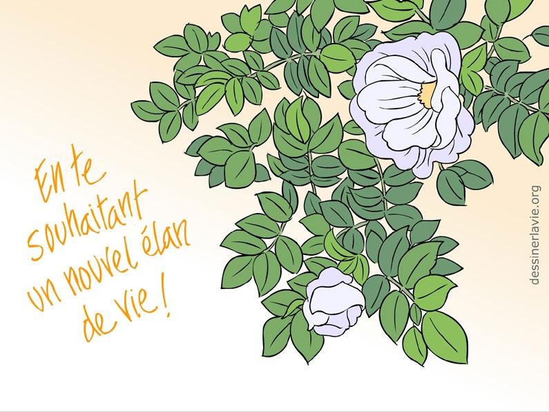 Dessins copier dessiner la vie - Fleurs a dessiner modele ...