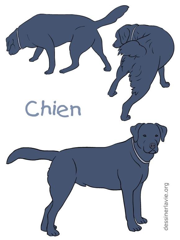 affiche-chiens-0001