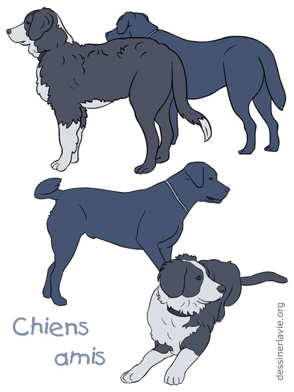 affiche-chiens-0002